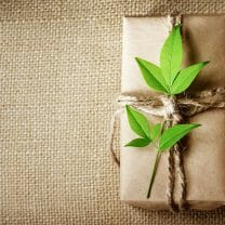Give yourself the gift of naturally good health this Christmas, By Dr. Eccles