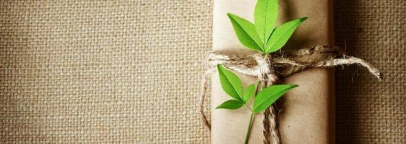 Give Yourself The Gift Of Naturally Good Health This Christmas