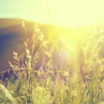 5 reasons to choose natural health