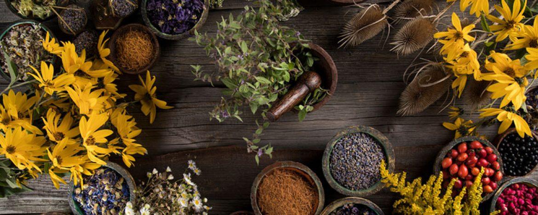 Blog Natural Medicine